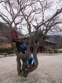 Seoroksan, Korea